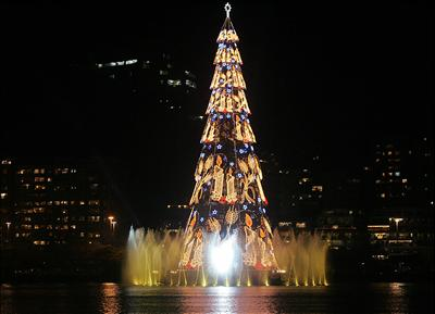 a christmas tree lighting ceremony was held in rio de janeiro brazil on nov 26 according to guinness world records the 82 meter tall tree decorated with - Biggest Christmas Tree In The World