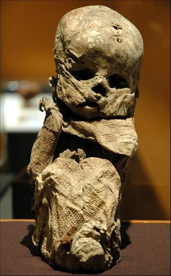 People's Daily Online -- Ancient mummies of Peru unearthed ...