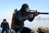 Chinese Navy frogmen in training: photos