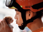 Heart-melting moment:Fireman comes to kitten's rescue