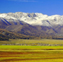 Picturesque Barkol grassland in Xinjiang