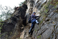 Villagers pick cubiloses on cliff in Sichuan