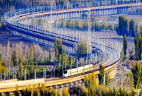 China has world's largest high-speed rail network