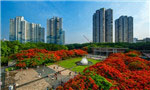 Tech firms seen leaving Shenzhen