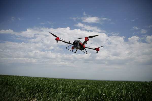 Xinjiang farmers employ drones in agricultural labor