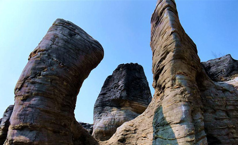 Scenery of stone forest in E China's Anhui