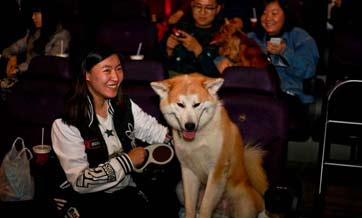 Xi'an dog owners bring furry friends to cinema screening
