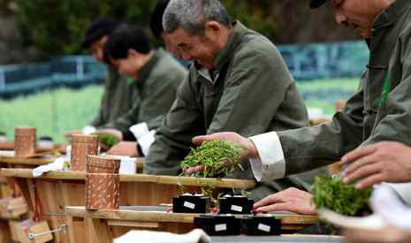 Tea-leaf frying contest held in southeastern China