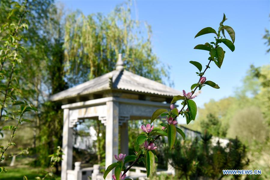 In pics: view of Yili Garden in Paris, France