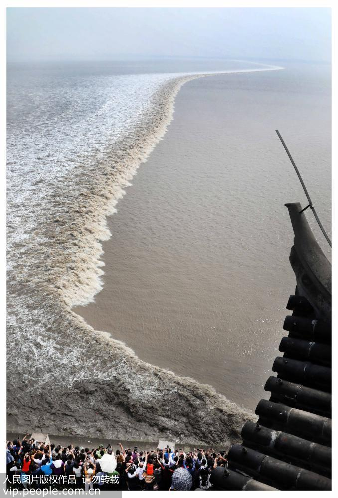 10,000 tourists flock to Haining for the Qiantang River tidal bore