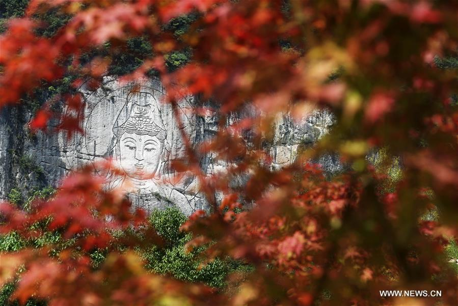 Colors of autumn: Charming scenery across China