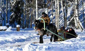 'Horse taxis' available in snow-capped Altay