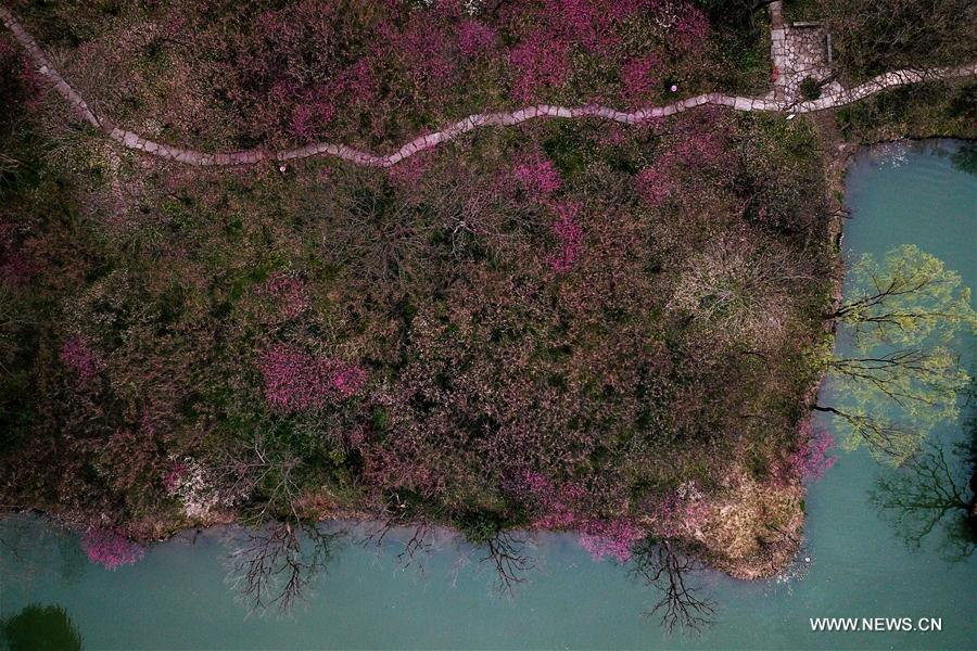 Aerial view of Xixi National Wetland Park