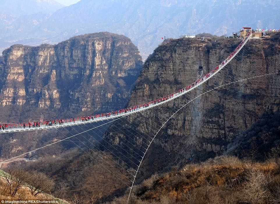 Is there room for one more? Hundreds of daredevil tourists swarm onto the world's longest glass bridge which sways at 755 feet high