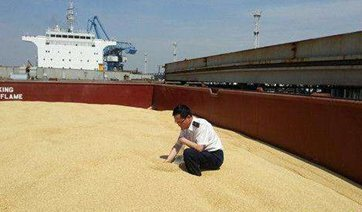 China sees different patterns regarding soybeans imports