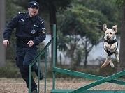 Police dogs trained in Wuhan, central China's Hubei