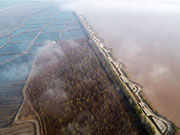 Yellow River wetland in China's Shaanxi