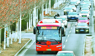 Beijing launches 164 customized bus routes to facilitate resumption of work