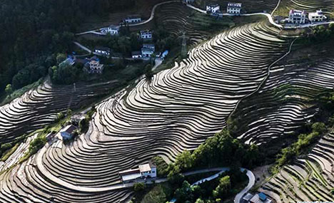 In pics: terraced fields in Shaanxi