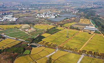 Early Neolithic sites in east China's Zhejiang form alliance