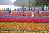 Tourists enjoy themselves amid flowers at Shimen National Forest Park in Guangzhou