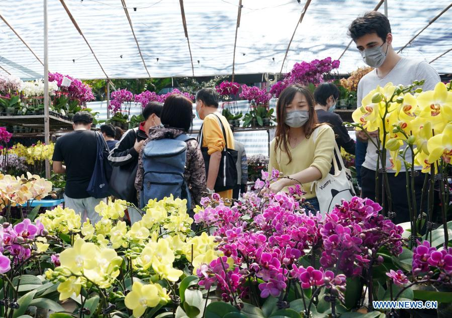 Hong Kong scales down Lunar New Year flower trade amid pandemic