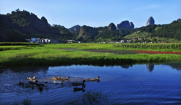 Town in Hunan carves own path to success