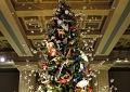 Featured trees in NY usher in Christmas Eve