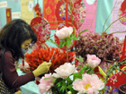 Flower fair adds festivity to Spring Festival