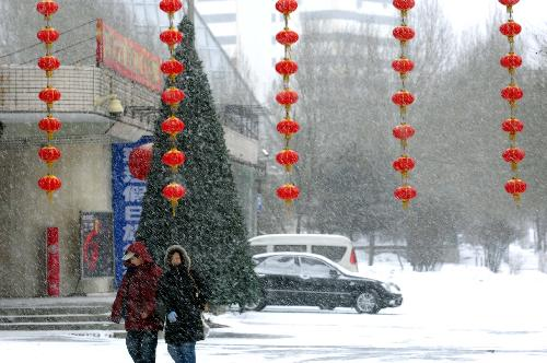 Snowfall in NE China greets auspicious new year