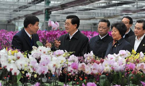 President Hu visits Taiwan businesses on mainland ahead of Spring Festival