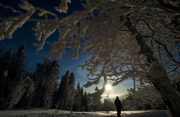 Germany in coldest December in 40 years