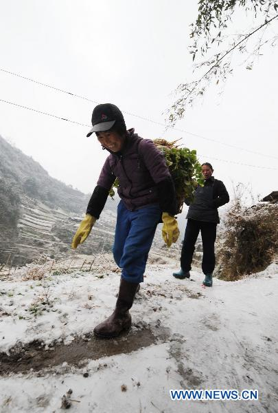 Parts of southern China battling freezing rain