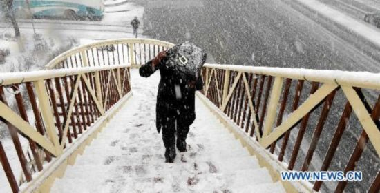 Heavy snow hits NE China's Harbin