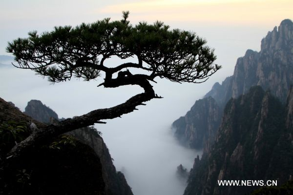 Seas of clouds appear at Huangshan Mountain