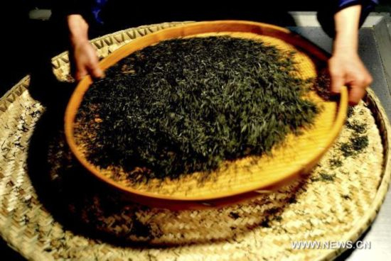 Precious Jade Dew Tea faces risk of disappearing in Hubei
