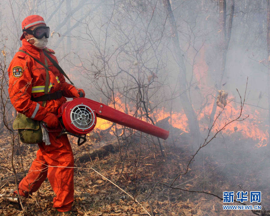 Forest fire breaks out in Heilongjiang province