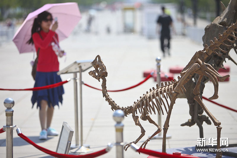 Hi-tech products shine at Beijing Science, Technology Week