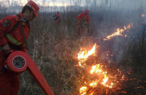 Wildfire extinguished in Inner Mongolia, N China