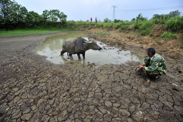 Worst drought in 6 decades hits C China's Wuhan