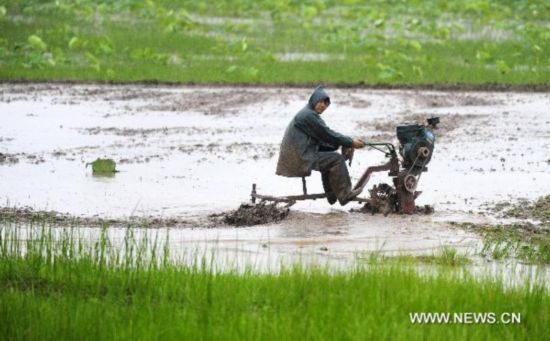 Rain eases thirsty Hubei Province