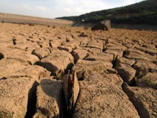 East China's Changxing County witnesses worsening drought