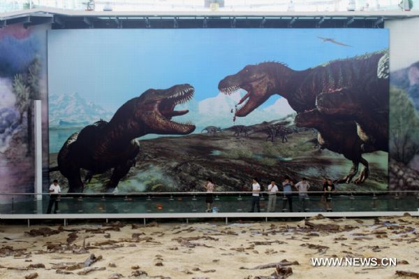 Tyrannosaurus exhibition opens in east China