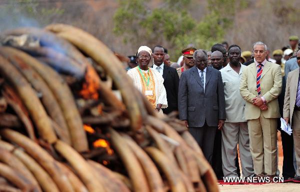 Kenya burns ivory to counter growing smuggling