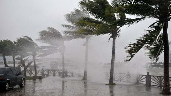 Photo taken on Sept. 29, 2011 shows strong wind blows trees in Sanya, south China's Hainan Province. Typhoon Nesat heads towards south China and is moving at an average wind speed of 20 km per hour toward the west coast of China's Guangdong Province. (Xinhua/Hou Jiansen)