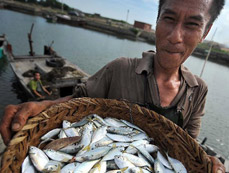 China to impose fishing ban in South China Sea