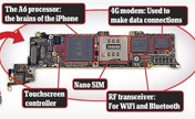 Take the iPhone 5 apart