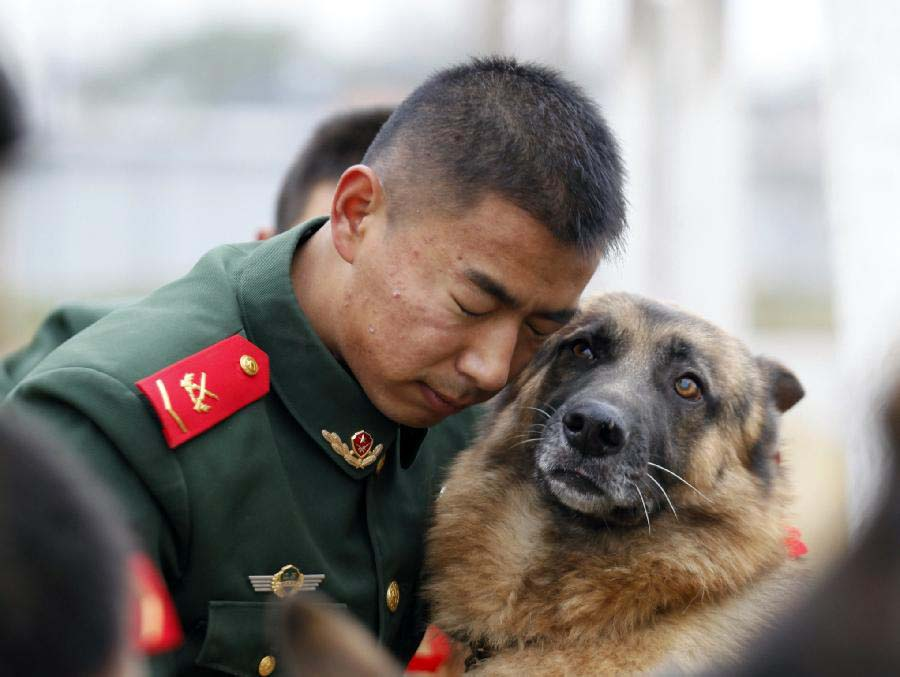 A dog handler hugs his police dog which has completed military service in Jiangsu Armed Police Corps in Nanjing, capital of east China's Jiangsu Province, Nov. 23, 2012. Five police dogs have to leave the corps as their term of military service is due. (Xinhua/Li Ke)