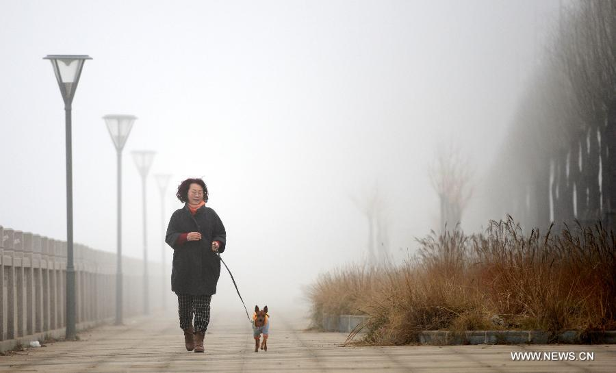 Dense Fog Envelops Cities In China 2 People S Daily Online