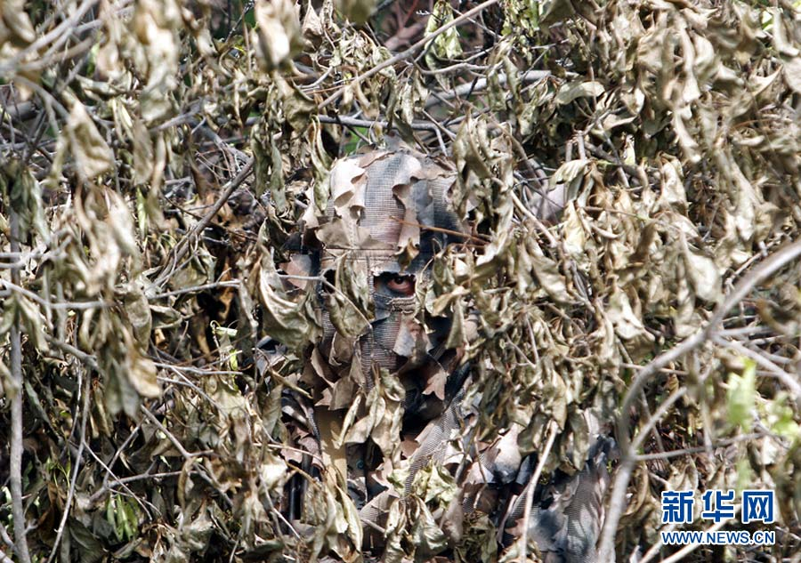 Photo taken on June 13, 2007 shows a soldier hiding behind a dead tree. (Photo/ Xinhua)